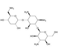 Tobramycin.jpg